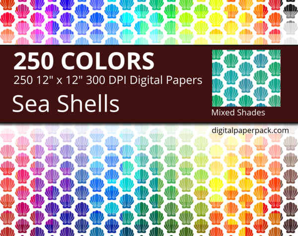 Medium mixed shades shells on colored background, with seashells of slightly different shades and tints on a white background.